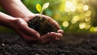 nachhaltigkeit-titelbild